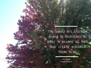 On Knowing What The Leaves Know | girlwithblog.com